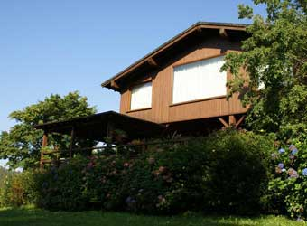 Casa de madera tratada